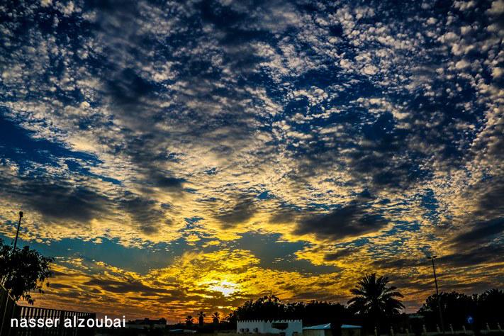 ركن المصور ناصر الزعبي ( المجموعة التاسعة )